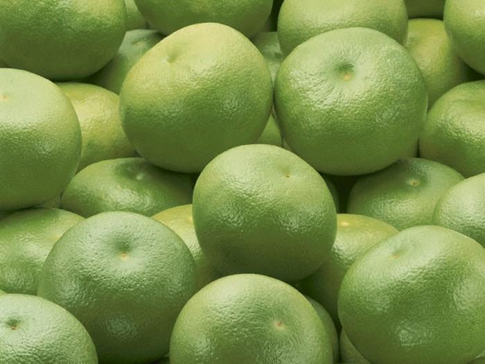 Зеленый свити