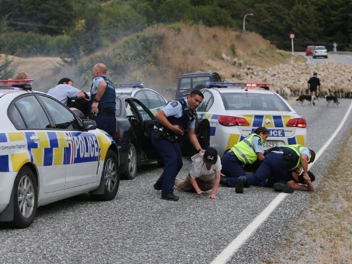 Преступность в Новой Зеландии