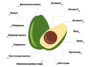 Sostav avokado