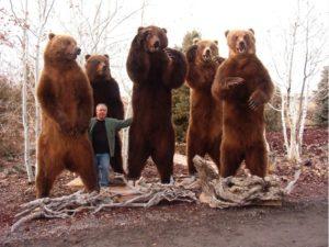 Самые большие медведи