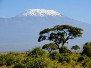 Снега Килиманджаро над саванной