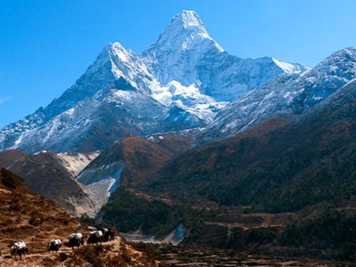 Караван в Гималаях