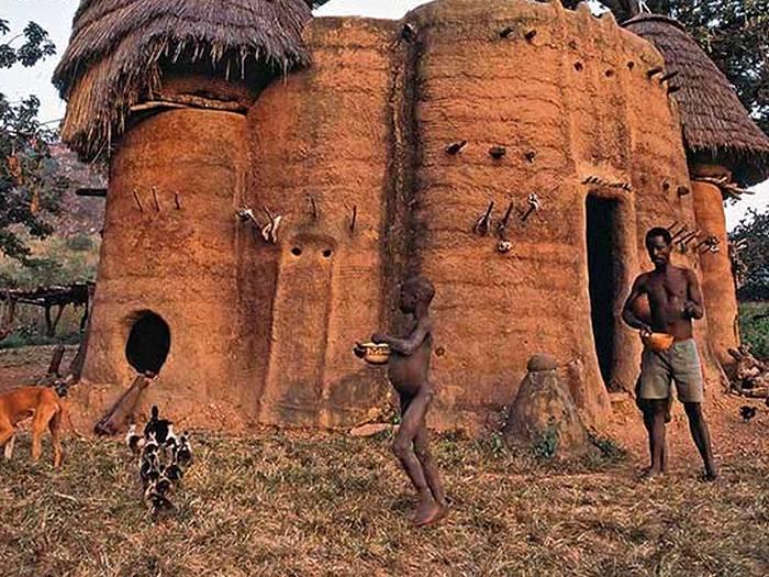 Баобабо-дом
