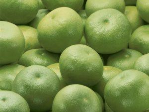 Плоды свити