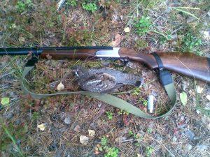 Охота по рябчику