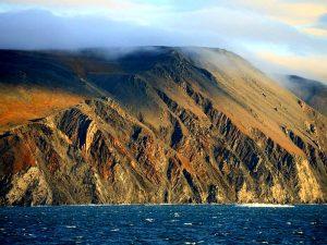 Остров Врангеля фото