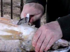 Рыбацкий нож в деле
