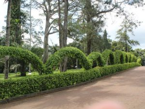 Ботанический Сад Абури Аккра