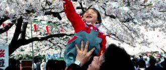 Праздник Ханами. Японская традиция Ханами