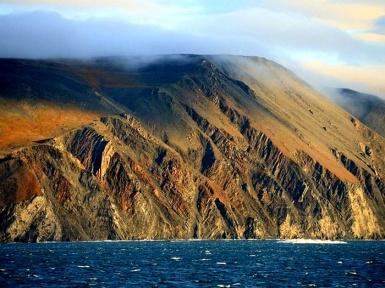 Остров Врангеля заповедник. Остров белых медведей