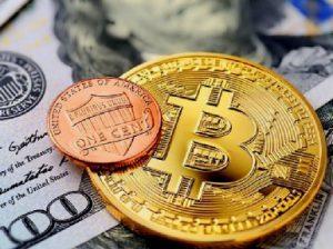 Криптовалюта для новичков. Что такое криптовалюта простыми словами