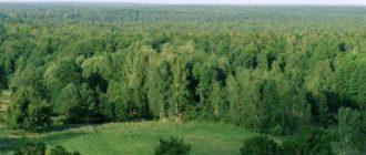 Беловежская пуща - Беларусь