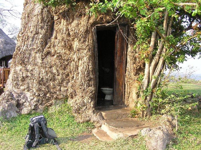 Баобабо-туалет
