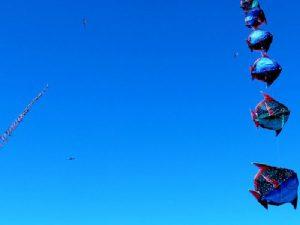 Воздушные змеи фото