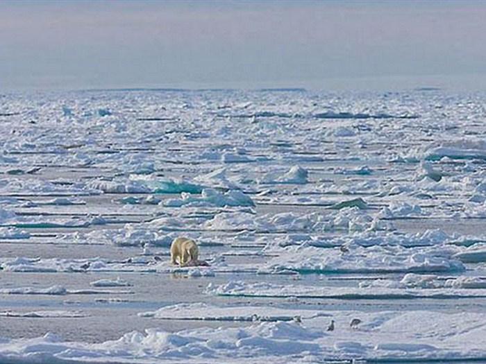 Безбрежные просторы Карского моря