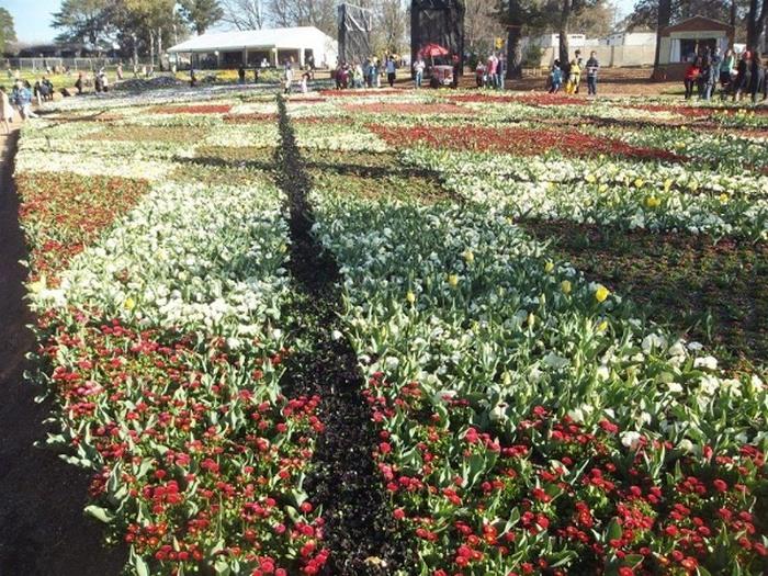 Цветочный фестиваль