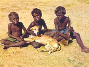 Динго у детей аборигенов