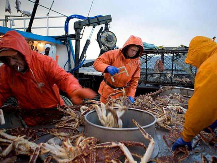 Добыча крабов в Беренговом море