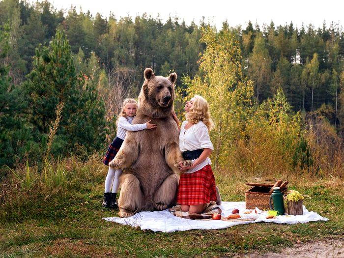 Домашний медведь