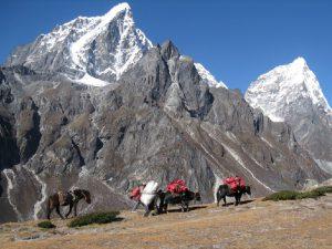 Дорога на Эверест