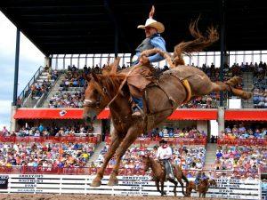 Езда на лошади с седлом