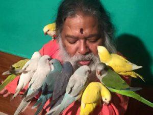 Повелитель птиц