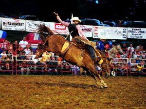 Saddle Bronc Riding — классика родео