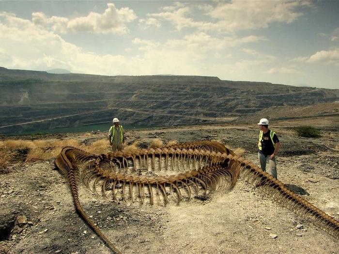 Скелет гигантской анаконды