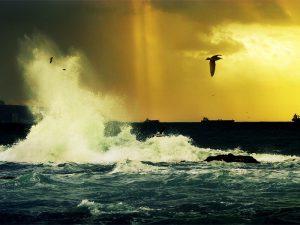 Скоро грянет буря