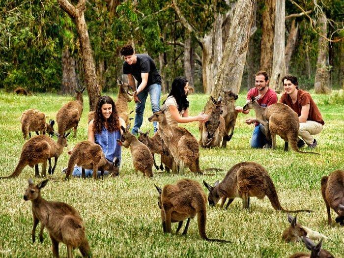 Туристы на острове