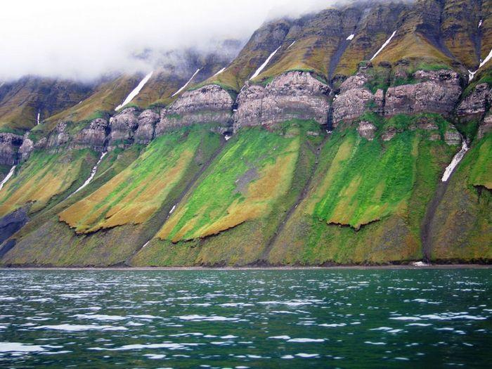 Удивительный берег
