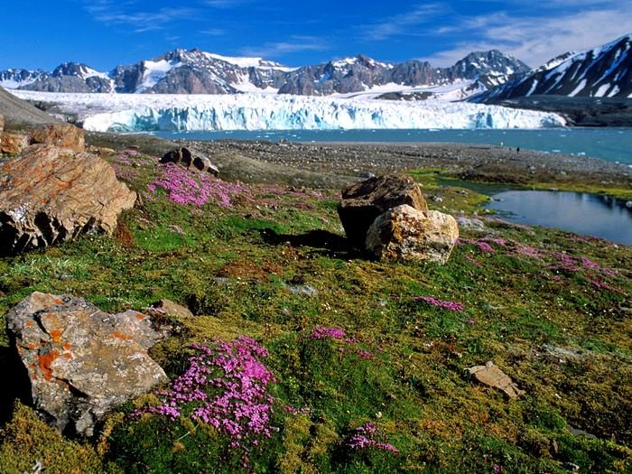 Весна на Свальбарде
