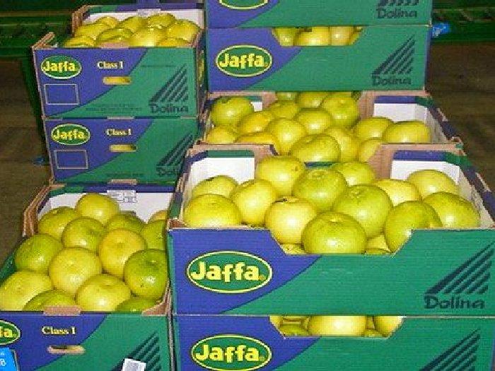 Заморский фрукт