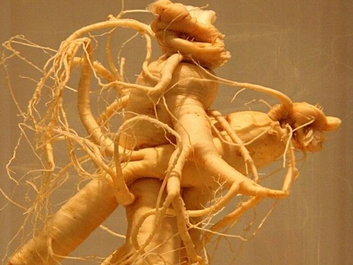Запутаный корень