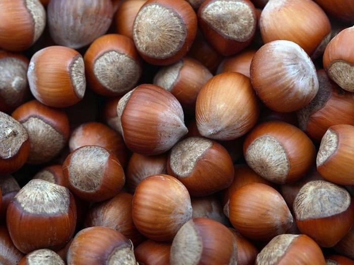 Сколько-орехов-в-день-можно-есть-4
