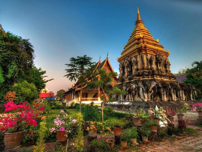 Интересные факты о Бангкоке. 10 фактов о городе Бангкок
